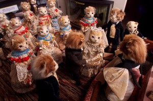 cats-wedding_1737761i