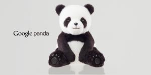 the_panda